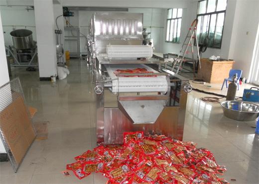 袋装食品微波杀菌机